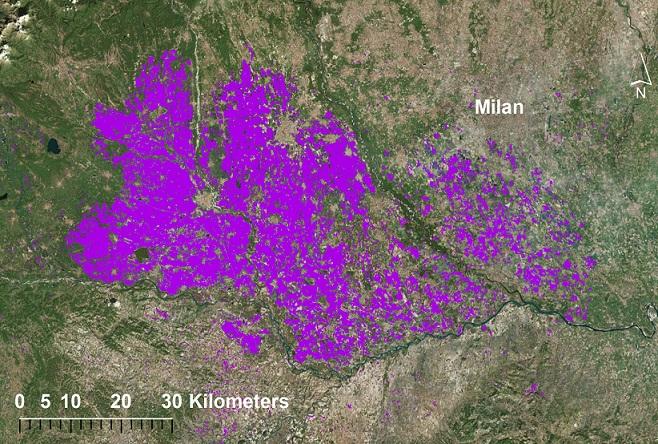 italian rice area