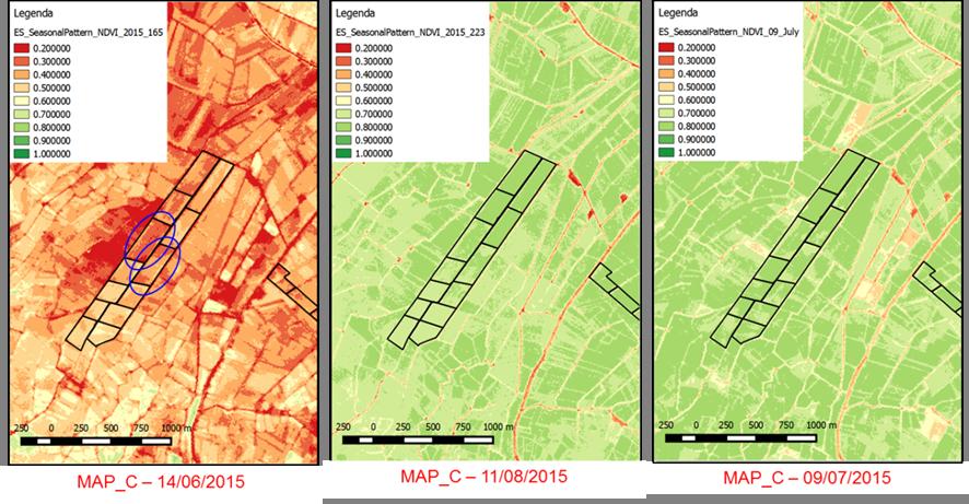 World view NDVI maps in the Albuferra reagion (ES).