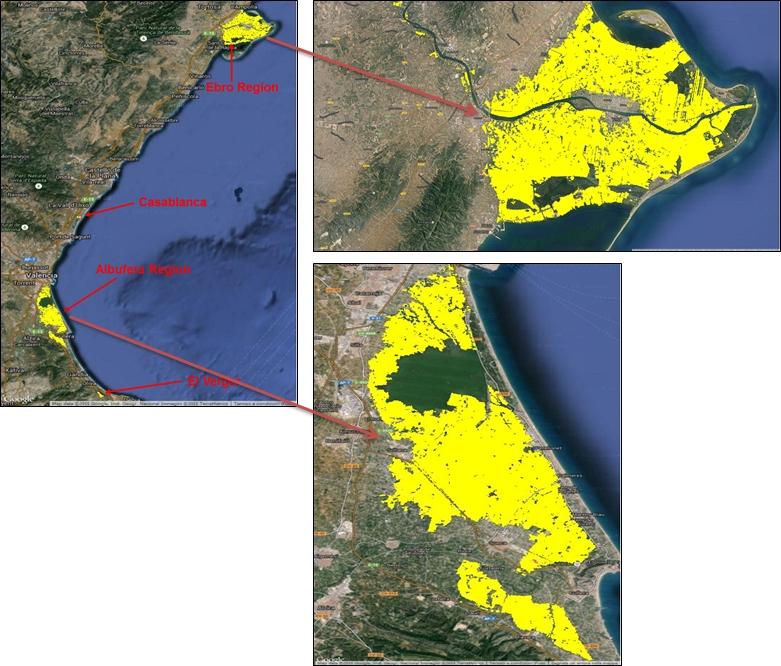 Spanish Rice crop maps - 2015